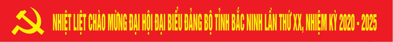 Dai hoi dang bo tinh